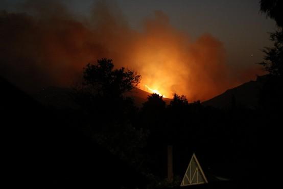 Najmanj 31 žrtev požara na severu Kalifornije