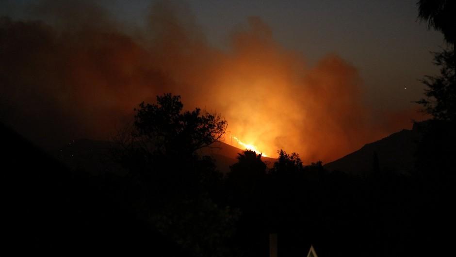 V Kaliforniji divja gozdni požar, evakuirali že več tisoč ljudi (foto: Profimedia)
