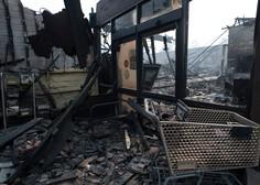 Po zadnjih podatkih so ognjeni zublji v Kaliforniji ugasnili 71 življenj, več kot tisoč pogrešanih