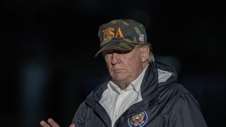 Fince neznansko zabavajo Trumpovi komentarji o gozdovih (foto: profimedia)