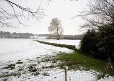Prve snežinke pobelile nekatere kraje po Sloveniji