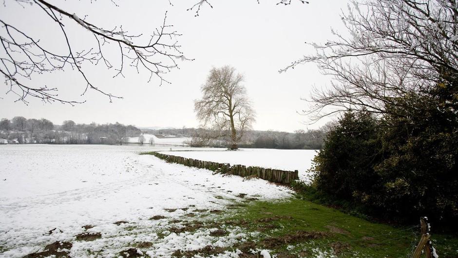Prve snežinke pobelile nekatere kraje po Sloveniji (foto: Profimedia)