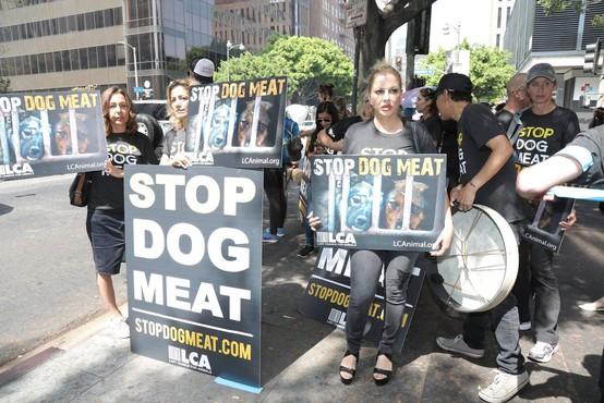 V Južni Koreji navkljub 100-letni tradiciji zaprli največjo klavnico psov