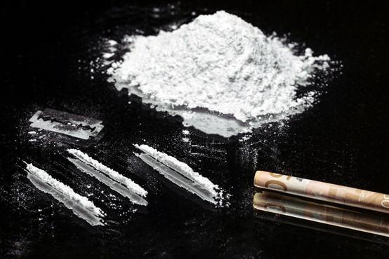 Brazilska pošiljka usnja s 700 kilogrami kokaina, vrednega okrog 80 milijonov evrov