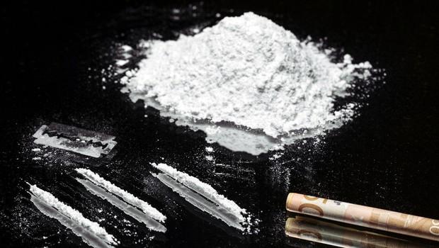 Brazilska pošiljka usnja s 700 kilogrami kokaina, vrednega okrog 80 milijonov evrov (foto: profimedia)
