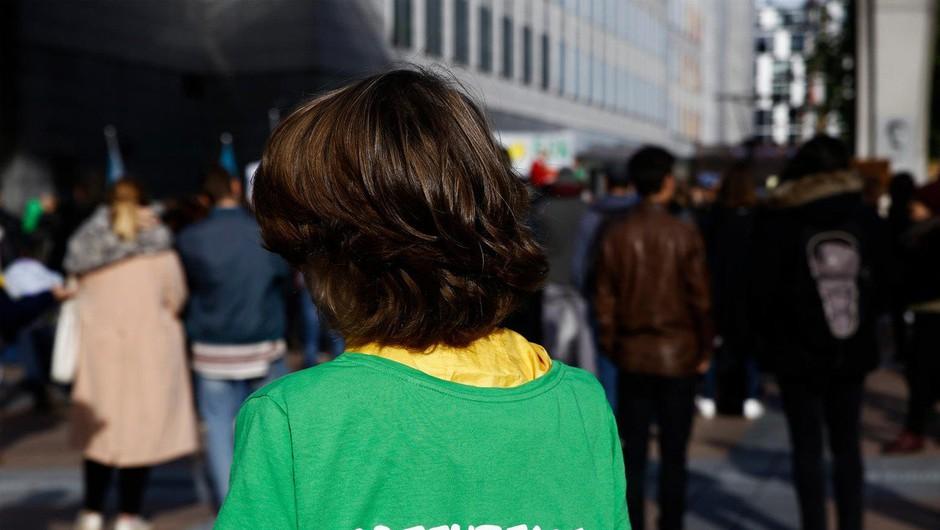 Dvanajst  okoljskih aktivistov za slovaškimi zapahi zaradi protesta proti kurjenju premoga (foto: profimedia)