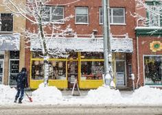 ZDA prizadela snežna neurja, ki so terjala 7 smrtnih žrtev