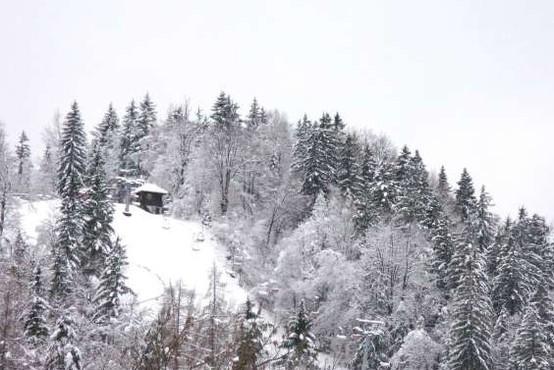 V avstrijskih Alpah je zaradi močnega sneženja obtičalo več tisoč ljudi