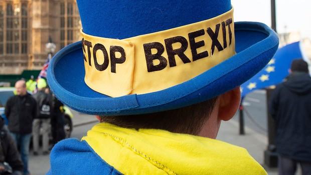 Več kot sto evropskih poslancev poziva Britance k zaustavitvi brexita (foto: profimedia)