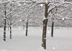 Sneg in nizke temperature po Evropi ovirajo promet in ogrožajo tako ljudi kot živali
