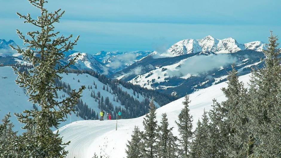 v Avstriji je slovenska smučarka preživela snežni plaz (foto: Profimedia)