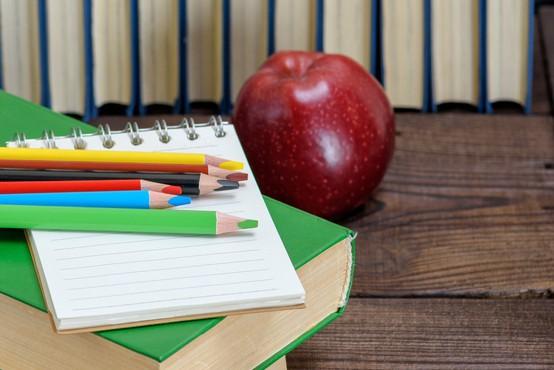 Ravnateljici izolske osnovne šole se brani očitkov iz anonimke o mobingu