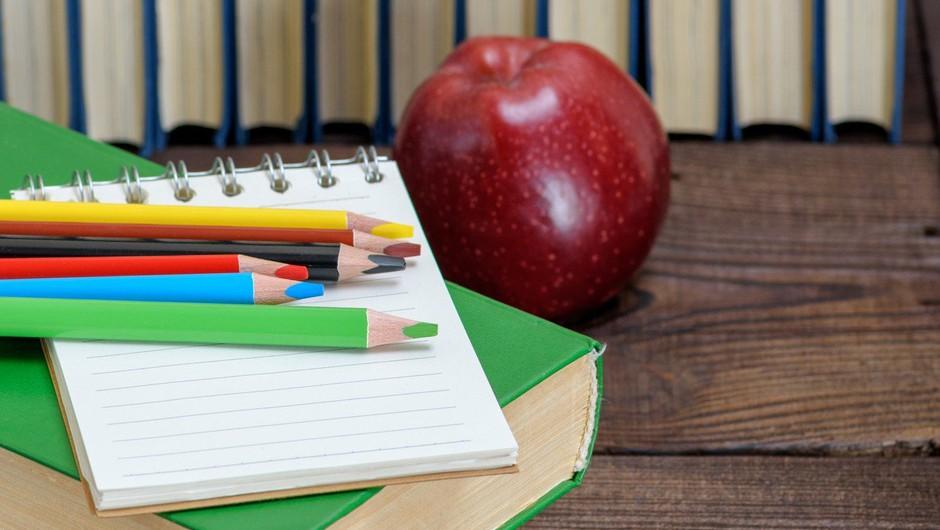 Ravnateljici izolske osnovne šole se brani očitkov iz anonimke o mobingu (foto: profimedia)