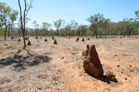 Avstralija zabeležila najtoplejši januar v zgodovini meritev!