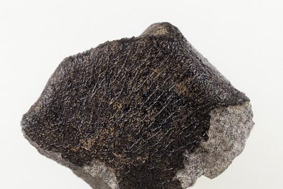 Meteorit, ki so ga najprej opazili nad Florido, je potem razneslo nad Kubo
