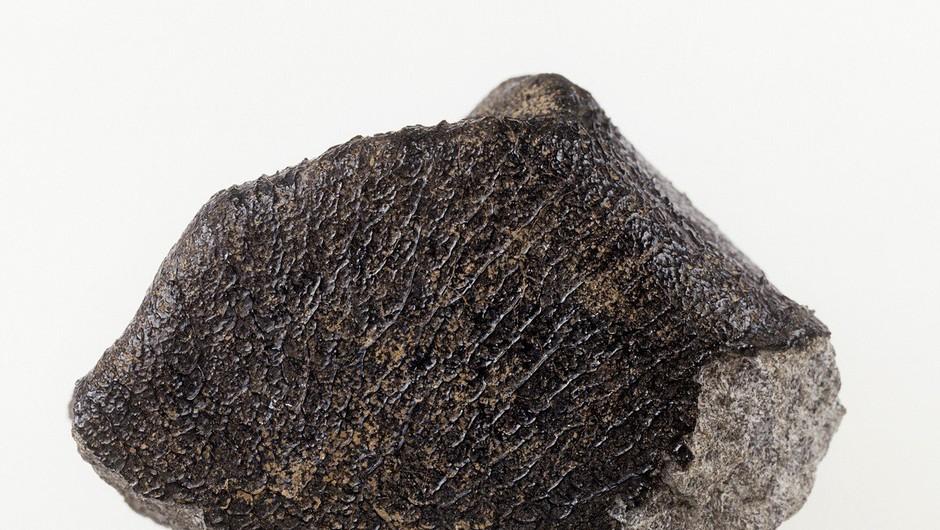 Meteorit, ki so ga najprej opazili nad Florido, je potem razneslo nad Kubo (foto: profimedia)