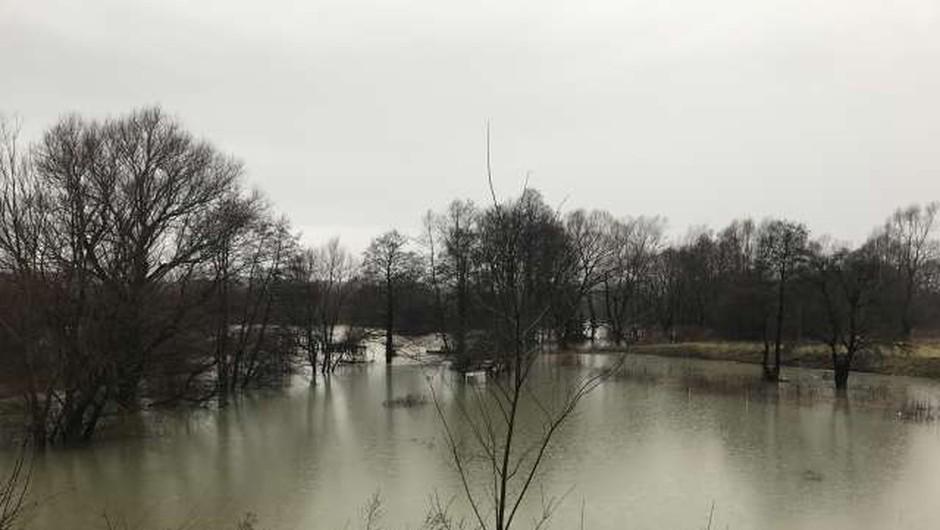 Notranjska reka Reka poplavlja, Kolpa in Vipava se razlivata na izpostavljenih mestih (foto: STA/Tatjana Žnidaršič)