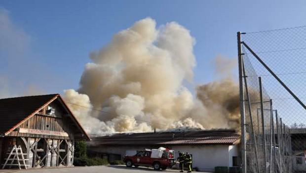 Škoda v požaru na obratu kmetijske šole pri Novem mestu naj bi dosegla milijon evrov (foto: STA)