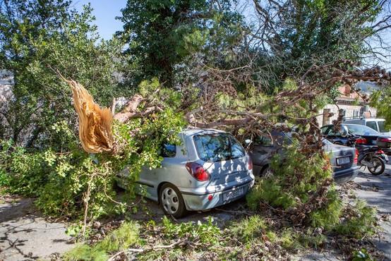 Neurja po Italiji terjala pet življenj, med njimi je tudi najstnik, ki je pomagal očetu pri popravilu škode