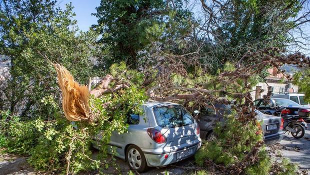 Neurja po Italiji terjala pet življenj, med njimi je tudi najstnik, ki je pomagal očetu pri popravilu škode (foto: profimedia)