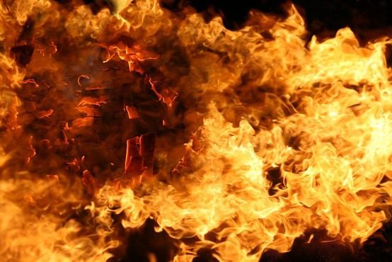 V Avstraliji divja več kot 30 požarov, ogenj požira domove, gozdove in grmičevje