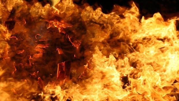 V Avstraliji divja več kot 30 požarov, ogenj požira domove, gozdove in grmičevje (foto: profimedia)