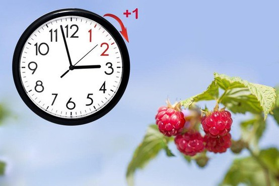 Evropski parlament glasoval za ukinitev premikanja ure leta 2021