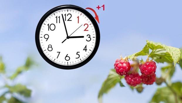 Evropski parlament glasoval za ukinitev premikanja ure leta 2021 (foto: profimedia)