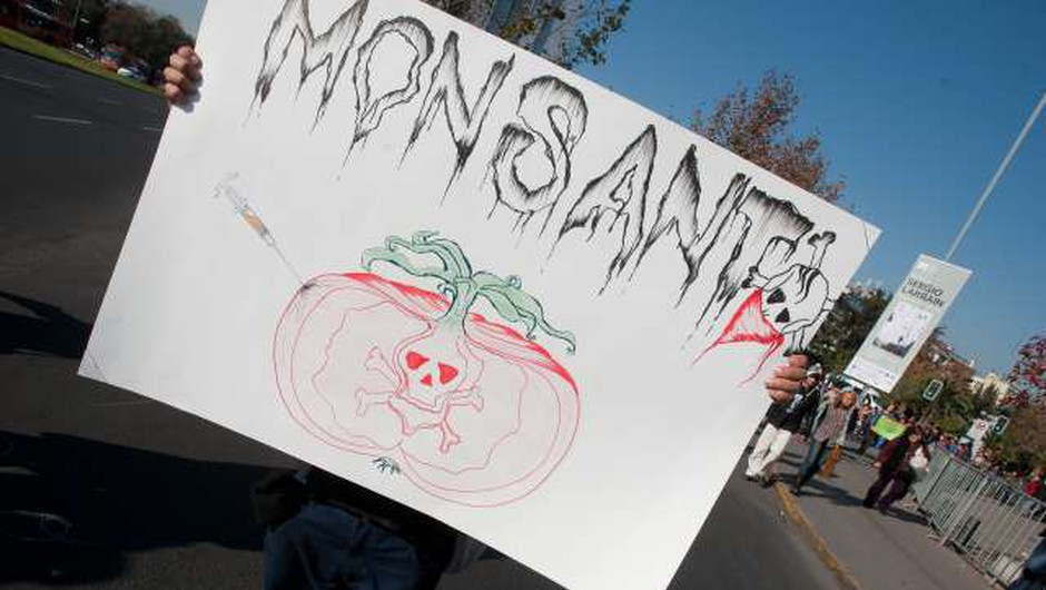 Monsanto bo bolniku z rakom moral odšteti 80 milijonov dolarjev odškodnine (foto: Xinhua/STA)