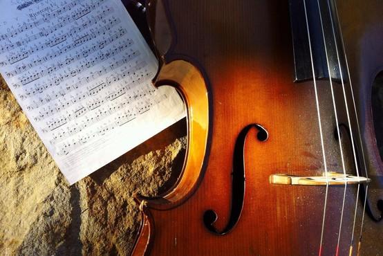 Neznanec v Ljubljani ukradel glasbilo iz avtomobila, parkiranega pred trgovskim centrom