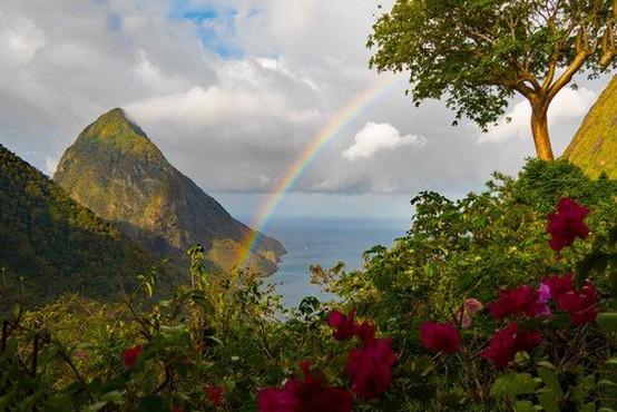 Ladja scientološke cerkve na Karibih zaradi ošpic v karanteni
