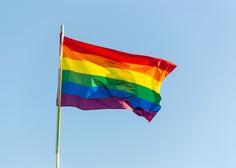 Paradi ponosa prvič v Mariboru in Skopju, v Beogradu prvič mirno