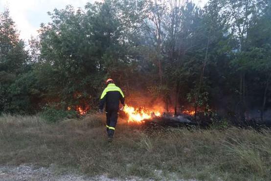 Požar na Cerju skoraj pogašen, požarišče bodo še nadzorovali