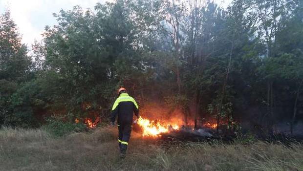 Požar na Cerju skoraj pogašen, požarišče bodo še nadzorovali (foto: STA/Rosana Rijavec)