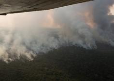 Pod pritiskom evropskih voditeljev je Bolsonaro v gašenje požara vključil vojsko