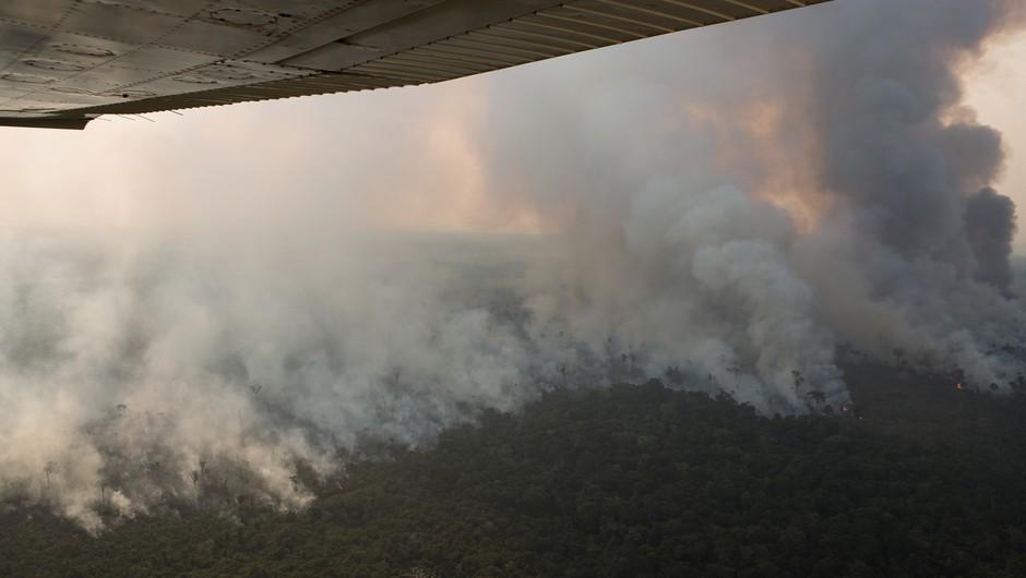 Pod pritiskom evropskih voditeljev je Bolsonaro v gašenje požara vključil vojsko (foto: profimedia)