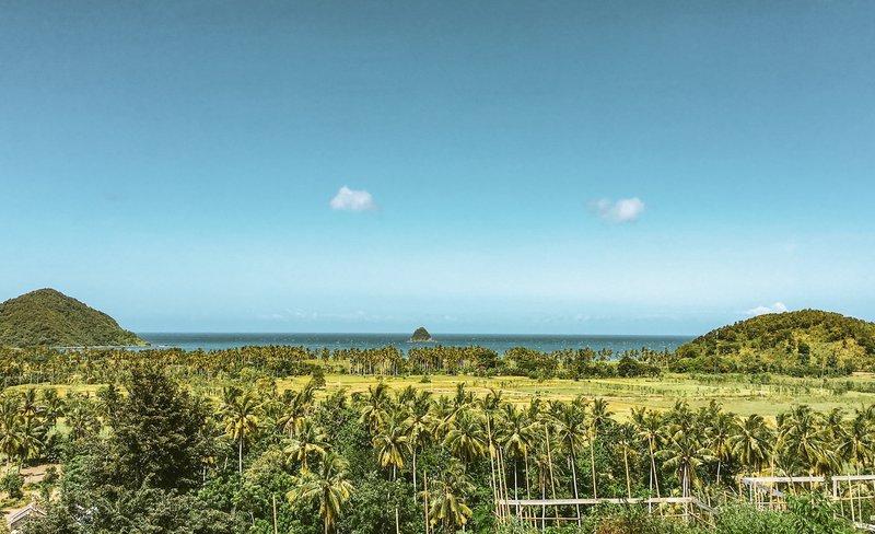 Razgled na palme in riževa polja z mesta, kjer bo stal njihov resort Disini na jugu Lomboka.