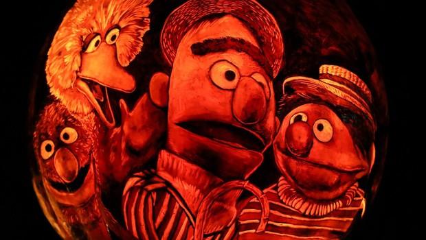 Priljubljena otroška serija Sezamova ulica se bo lotila problematike drog (foto: profimedia)