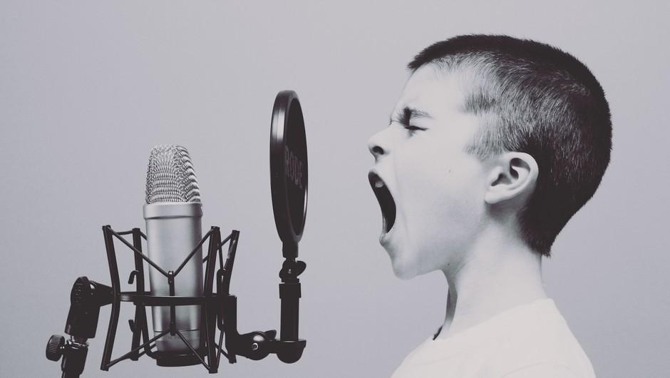 Se komu res zdi, da smo dovolj zreli za spreminjanje meja svobode govora? (foto: Unsplash)