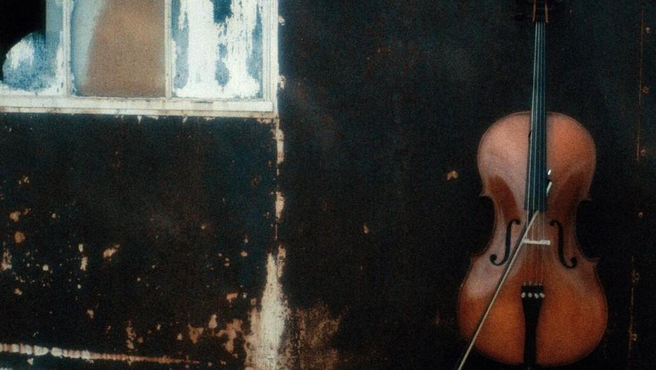 Na vlaku pozabljena dragocena violina po dveh tednih spet v rokah lastnika (foto: profimedia)