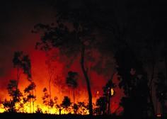 Na območju Sydneyja razglasili stanje naravne katastrofe