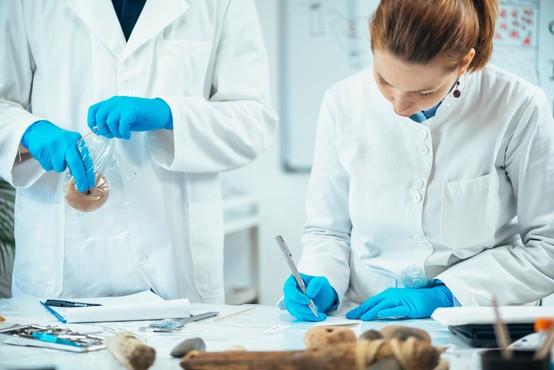 Za štipendije v znanosti se letos poteguje 25 mladih raziskovalk