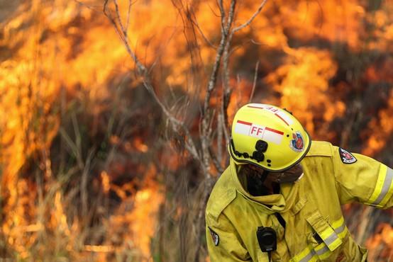 Avstralija v dimu in ognju, premier zanika povezavo s podnebnimi spremembami