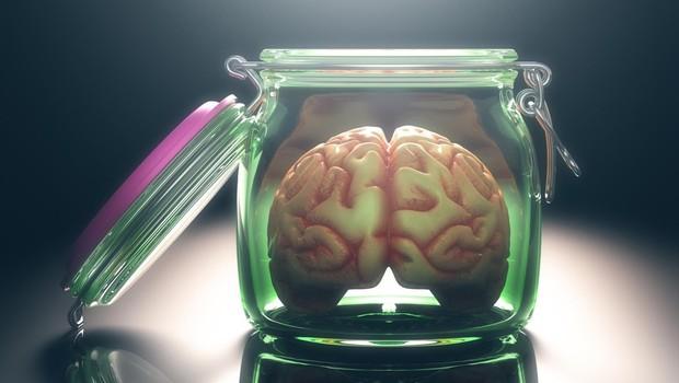 Dilema: je vse zapisano v genih ali pa smo le produkt našega okolja? (foto: profimedia)