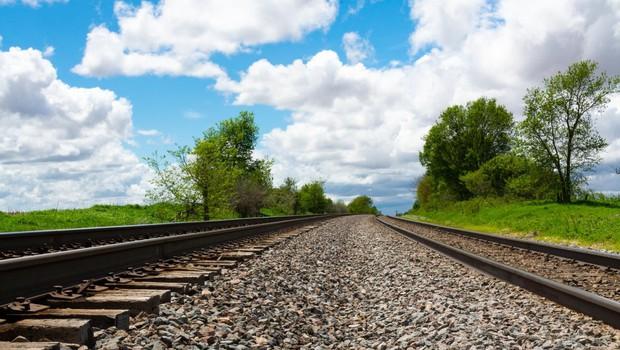 Turisti se zelo zanimajo za potovanje z legendarnim Titovim modrim vlakom (foto: profimedia)