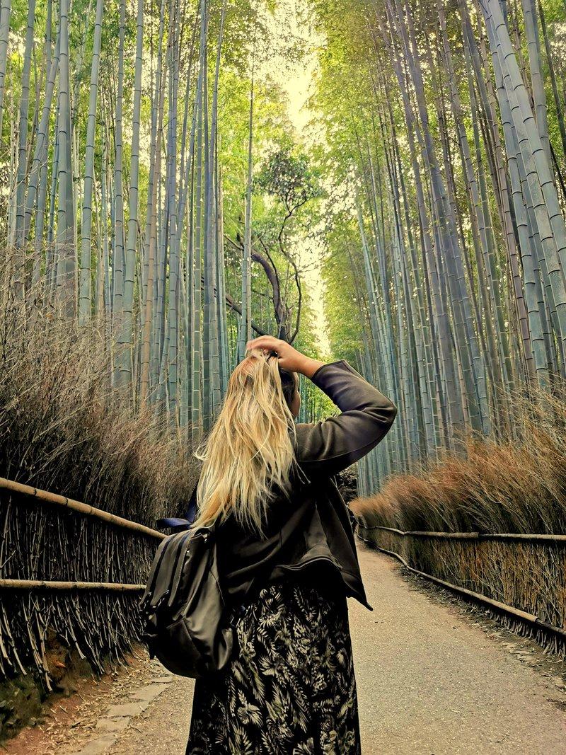 Arashiyama Bamboo Grove – bambusov gozd, Kjoto