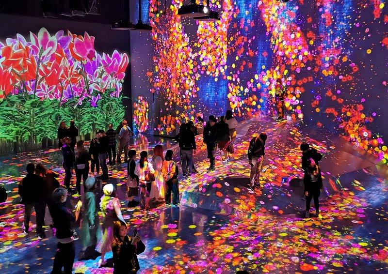 Digitalni muzej teamLab Borderless, Tokio