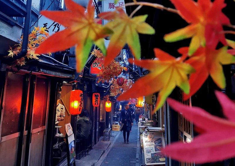 Piss Alley ali Memory Lane ali Omoide Yokocho