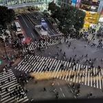Shibuya, Tokio (foto: Maja Fister)