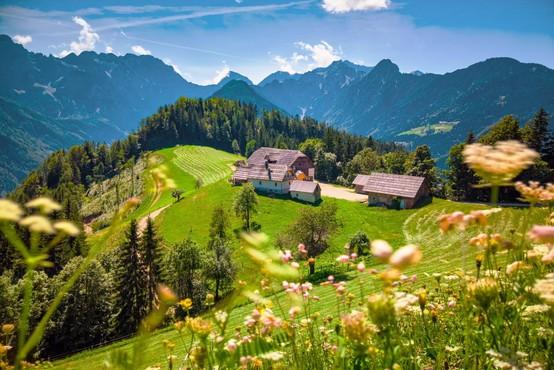 2,5 milijona evrov za prilagoditev slovenskih kmetij na podnebne spremembe